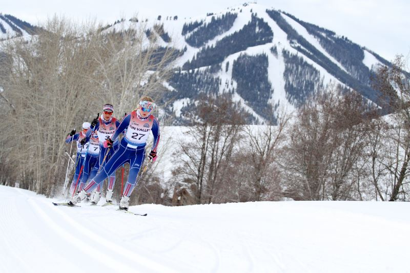 A group of skiers training cross country skiing on a snowy mountain